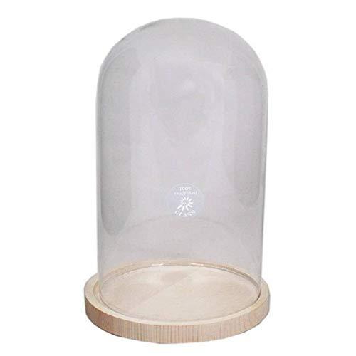 INNA-Glas Campana Decorativa SABIKA, con Placa, cilíndrica/Redonda, Transparente, 30cm, Ø17cm/Ø19cm - Campana...