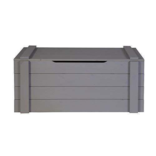 Alfred & Compagnie Coffre 90x42x42 bois massif gris acier