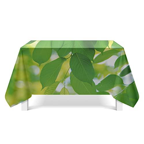 DSman Cubierta de Mesa Lavable Resistente al Aceite, Arte de Hoja Verde Fresca