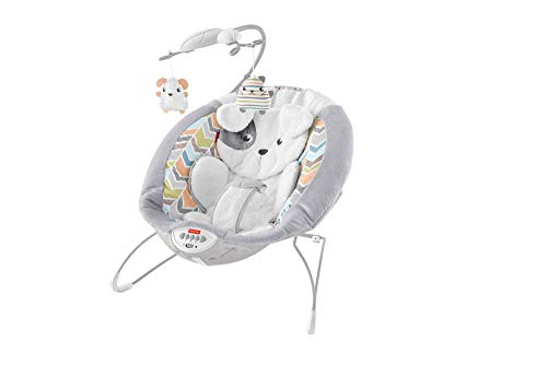 Why Choose Fisher-Price Deluxe Bouncer: Sweet Dreams Snugapuppy