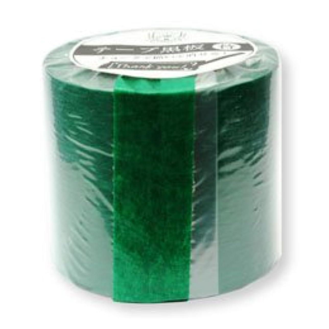 ライドフィールドしおれた(2個まとめ売り) 日本理化学工業 テープ黒板替テープ 50ミリ幅 緑 STRE-50-GR