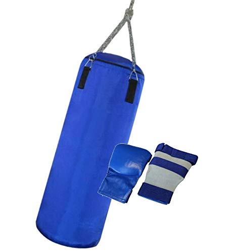 Budodrake Boxing-Set Professional M blau | Boxsack Handschuhe Boxen Set Geschenk Fitness