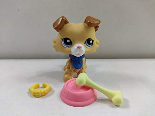 Littlest Pet Shop LPS#2452 Collie Dog Blue Eyes W/Accessories