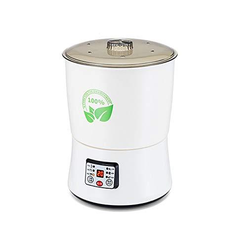 SSZZ Máquina de desintoxicación de Frutas y Verduras con oxígeno: Lavadora automática de Carne, purificación de Alimentos