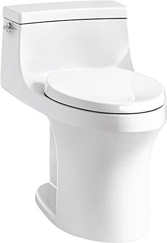 Kohler San Souci Toilet Reviews
