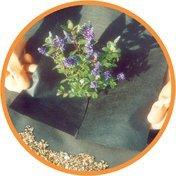Nutley's 10 x 1 m Weedban 50 Weed Control Fabric - Bl