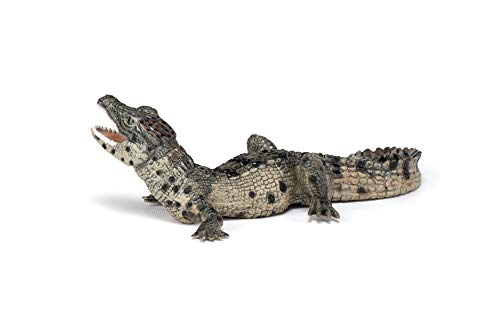 Papo 50137 Baby crocodile WILD ANIMAL KINGDOM Figurine, Multicolour