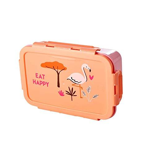 Lunchbox/Brotdose mit herausnehmbaren Einlagefächern, Muster Jungle Animal Print, verschiedene Far Farbe Coral Jungle Print