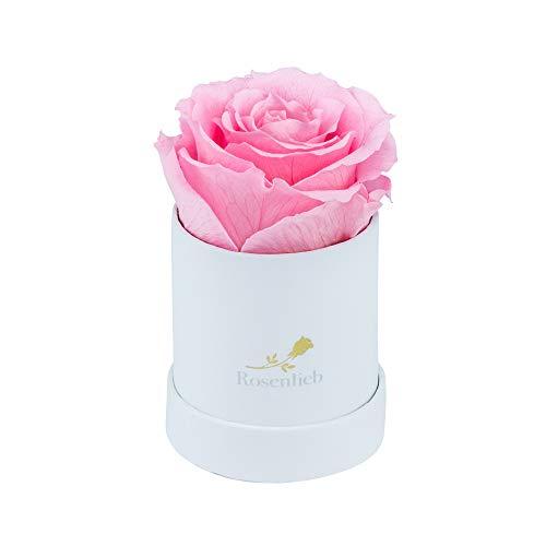 Rosenlieb Rosenbox Weiß mit Infinity Rosen (bis 3 Jahre haltbar)| Echte Rosen | Flowerbox Geschenk | Inklusive Grußkarte (Pico Bella, Rosa)