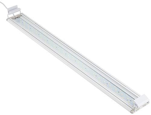 水作ライトアップ600白