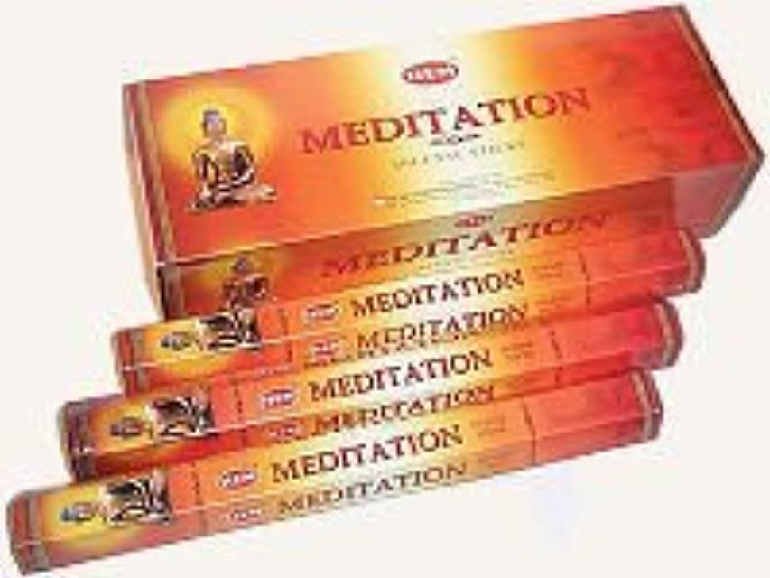組断線純正Hem Meditation Incense Sticks 120ct [並行輸入品]