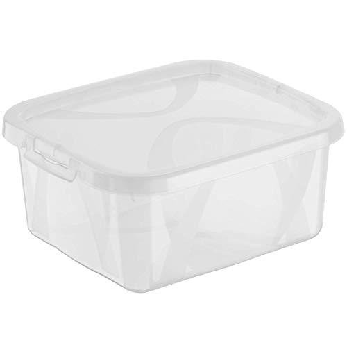 Rotho Arco Aufbewahrungsbox 2l mit Deckel, Kunststoff (PP), Transparent, 19,8 x 16,5 x 8,6 cm