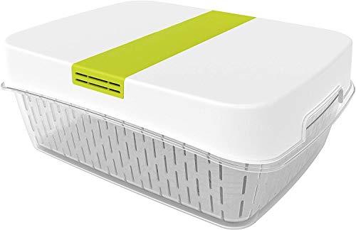 Rotho Fresh große Frischhaltedose 6,4l mit Belüftung, Kunststoff (SAN) BPA-frei, weiss/grün, 6,4l (31,4 x 23,9 x 12,0 cm)