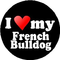 I Love My French Bulldog MAGNET (heart)