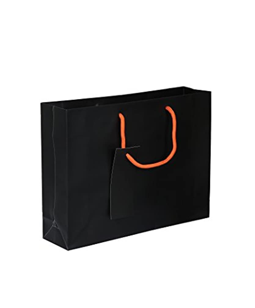 Parax Paper A4 Gift Bag with Rope Handle and Matching Gift Tag - Matte Black