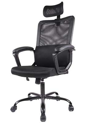 Smugdesk Ergonomic Office Chair Adjustable Headrest Mesh Office Chair Office Desk Chair Computer Task Chair (Black)
