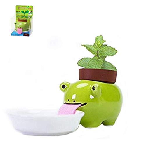 Watering Animal Planter,Self Watering Planter Drinking Animal Tongue,Cute Style Ceramic Mini Backpack Plant Pot by MVORVTC (Frog)