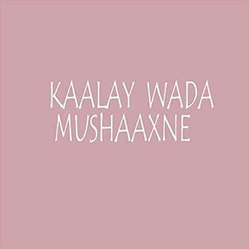 Kaalay Wada Mushaaxne (feat. Bilkhayr Ahmed)