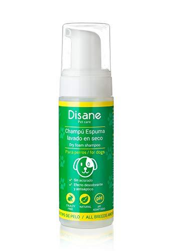 DISANE | Champu seco Perros | Natural 200 ml | Espuma Lavado seco para Perros | Sin aclarado | Elimina la Suciedad y los Malos olores de tu Perro |