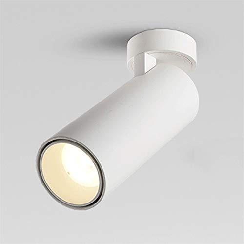 Luz de techo montada en superficie, lámpara de mazorca de aluminio, Downlight ajustable 110V- 230 V, foco de techo de pivote/accesorio de iluminación, redondo, blanco [Clase de energía A ++]