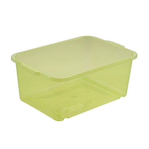 keeeper Boîte de Rangement, Plastique Robuste (PP), 2,8 L, 25 x 17 x 10 cm, Wilma, Vert Transparent
