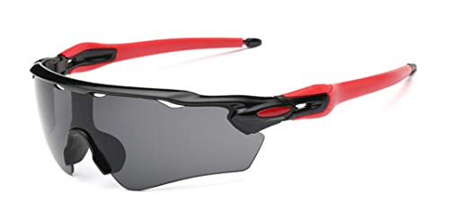 Flydo Occhiali da MTB Polarizzati Occhiali Bici Corsa Polarizzati Invernali Antifog e Anti UV...