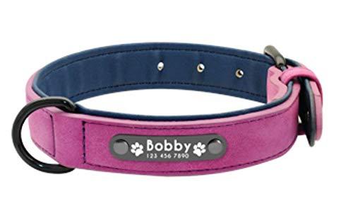 Collar Perro Personalizado Pequeño Mediano Grande Fabricado en Microfibras Ecológicas con Chapa identificativa Tallas  S M L XL XXL  Suave y Acolchado (S, Morado Purple)