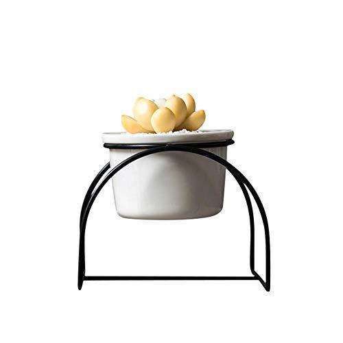 Eenvoudige ijzeren gebogen standaard keramische vetplant groene plant bloem ronde pot keramische pot ijzeren display doos set decoratie voor home kantoor winkel desktop
