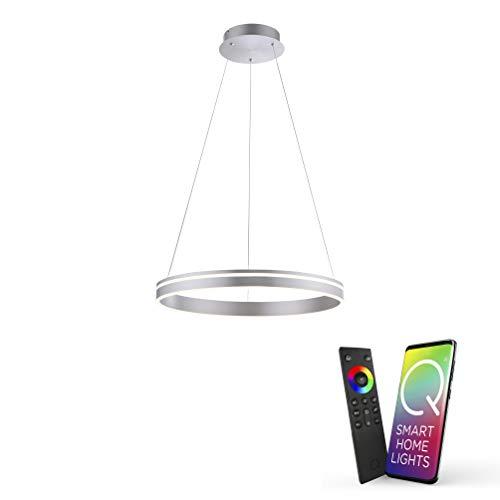 Paul Neuhaus Q-VITO LED Pendelleuchte, Works with Alexa – Smart Home, Fernbedienung CCT warmeiß – kaltweiß (59cm Silber)