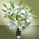 Ramo Flores Frescas de Lilium Blanco 10 Tallos PORTES GRATIS