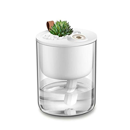 Desk Humidifier, [Latest Update Version] Usb Cold Mist Humidifier Personal Humidifier, Quiet Desktop Humidifier, Bedroom Home Baby Office, Automatic Shut-Off Time, 320Ml (White)