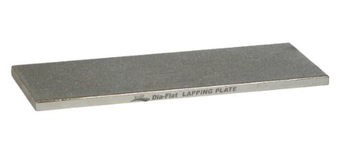 移動する以下抑圧DMT DIA-FLAT Lapping Plate [並行輸入品]