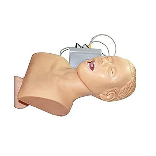 Angelay-Tian Modelo Anatómico Humano, Modelo De Entrenamiento De Intubación De Traqueal Electrónico del Cuerpo Humano con Dispositivo De Alarma De Presión Dental