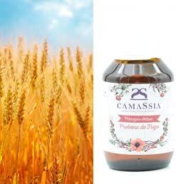 Proteína de trigo (Queratina vegetal)
