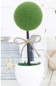 ShopMeeko SEEDS: 2016 Kreative Simulation Topfpflanzen Fangen liebe fünfzackigen Stern kleinen Bonsai s Kugel Ausgang Dekorationen Ornamente Geschenk: 1