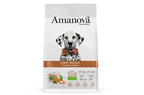 Amanova Cibo Secco Super Premium per Cuccioli di Taglia Media o Grande Gusto Pollo - 100% Naturale, ipoallergenico e monoproteico - Low Grain - Cruelty Free - Formato da 2 kg