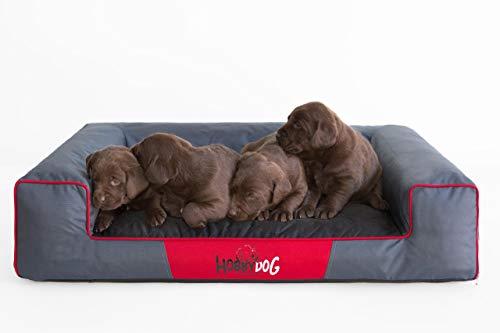 HobbyDog Hundebett Hundekorb Hundesofa für Haustier Hunde Waschbar - Victoria XXL - Grau mit Schwarz