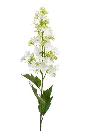 Artplants Set 12 x Hortensia paniculata Artificial IGARNE, Crema, 85cm - Hortensia de plástico/Flor Falsa