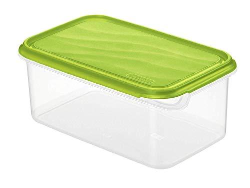 Rotho Rondo Frischhaltedose 2l mit Deckel, Kunststoff (PP) BPA-frei, grün/transparent, 2l (24,0 x 16,0 x 9,7 cm)