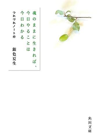 魂のままに生きれば、今日やることは今日わかる つれづれノート40 (角川文庫)