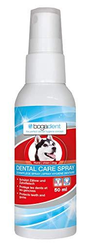 Bogadent Dental Care Spray Hund