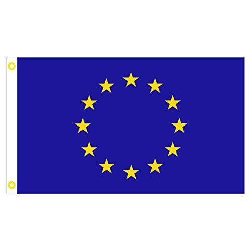 BGFint Europaflagge Europa Flagge EU Fahne 150x90cm Stoff 100g/qm