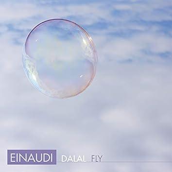 Einaudi: Fly