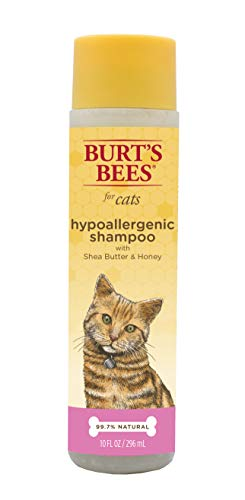Burt's Bees for Cats Hypoallergenic Shampoo with Shea Butter and Honey | Best...