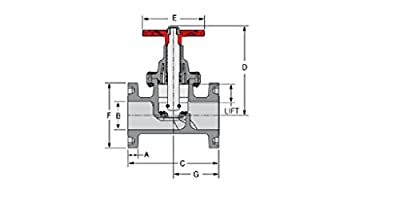 Spears 6023-025C CPVC Schedule 80 Product CPVC Globe Valve, CPVC Flanged Ends with EPDM, 2-1/2-Inch from Spears
