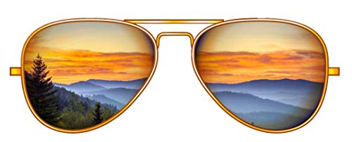 """Mountain Reflection Sunglasses - 5"""" Vinyl Decal Sticker from Blue Cannon Trading Company. Perfect for VSCO Girls, Water Bottles, laptops, notebooks, etc."""