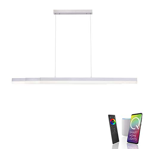 Paul Neuhaus Q-TOWER 2728-95 Lámpara colgante LED, compatible con Alexa Smart Home, regulable mediante mando a distancia, CCT blanco cálido, blanco frío, extensible