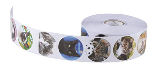 Cat Stickers, Sticker Roll (1.5 in, 1000 Pieces)  
