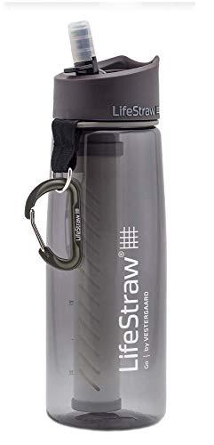 LifeStraw Go 2 Nachfüllbare Wasserflasche mit Eingebautem (2-Stufig) Grey Filter, Grau, M