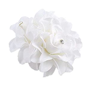 AKOAK New Beauty Women's Bridal Wedding Rhinestone Orchid Hair Clip Barrette Bridal Wedding Party Women Accessories (1Pcs,White)